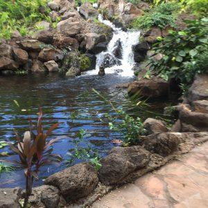 garden_waterfall_midwest_landscape